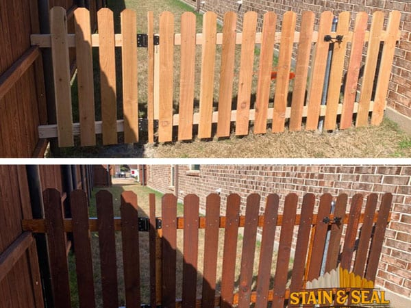 Fence staining before and after