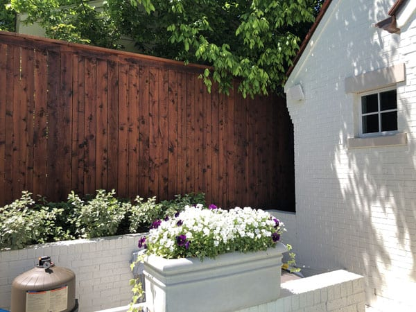After restaining part of the fence