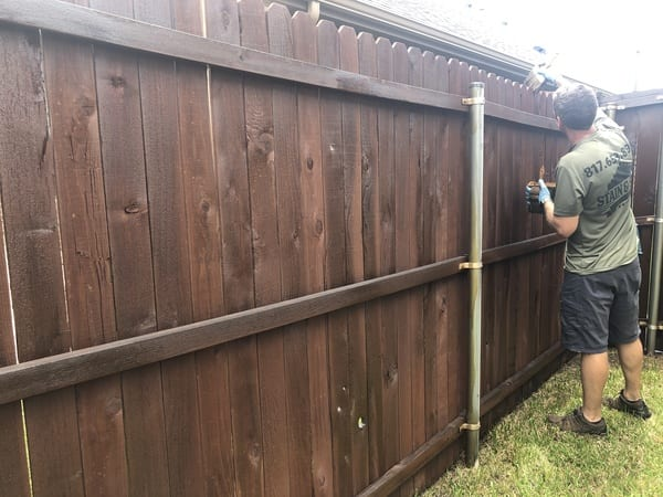 During the fence staining project