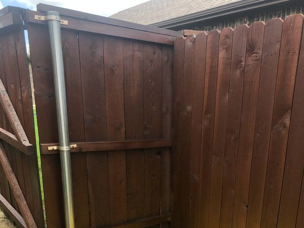 Fence during staining process